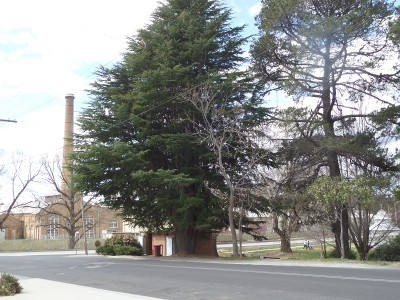 Portland NSW old cement works chimney